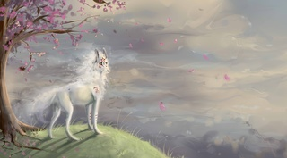 Okami Wallpapers