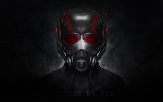Ant-Man (2015) Wallpapers