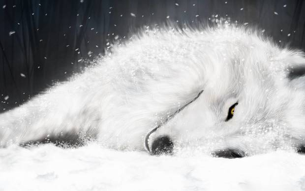 Awesome Wolf Wallpaper