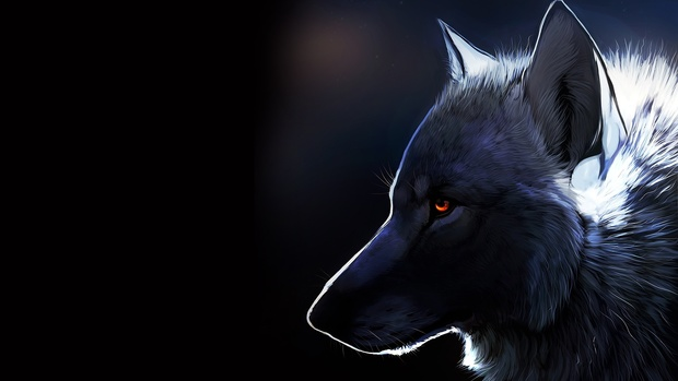 Latest Wolf Wallpaper