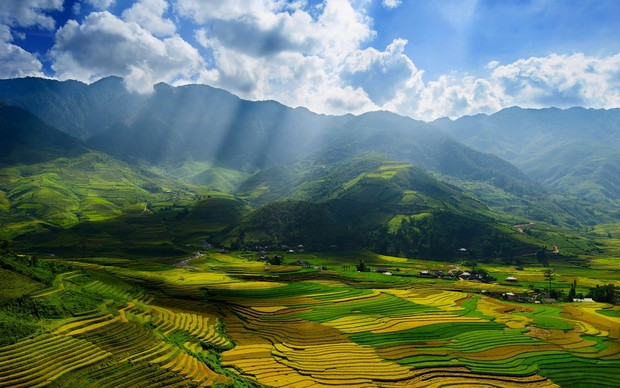 Vietnam Backgrounds
