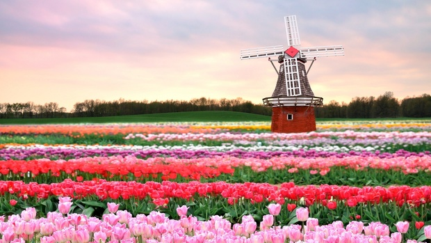 Netherlands Desktop Wallpapers