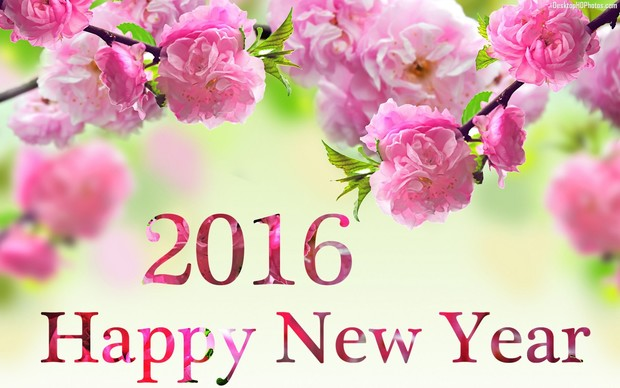 Happy New Year 2016 HD Wallpaper