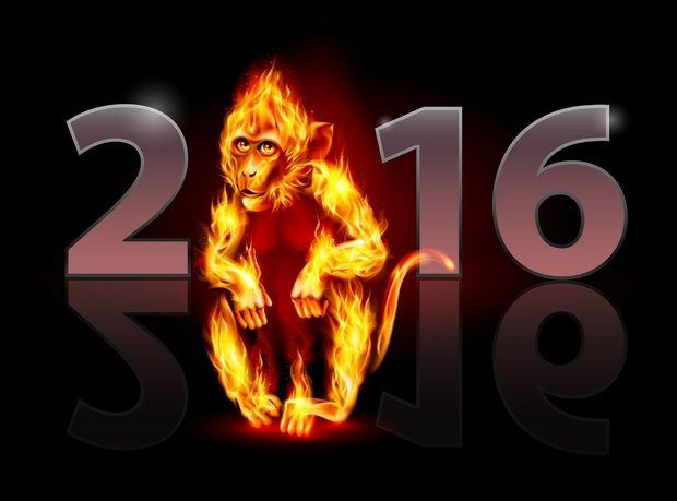 Year of the Monkey 2016 Image