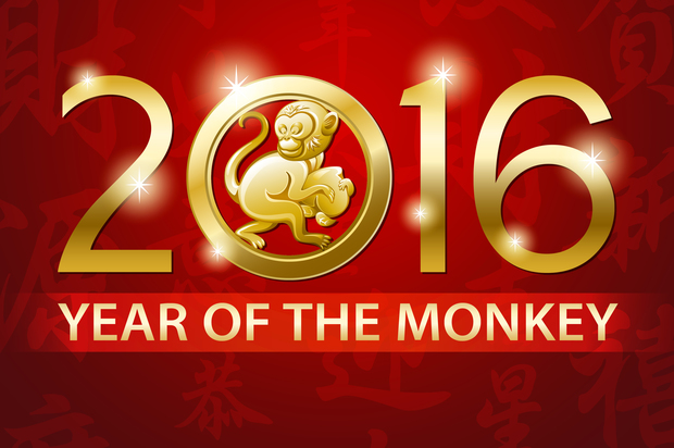 Year of the Monkey 2016 Picture