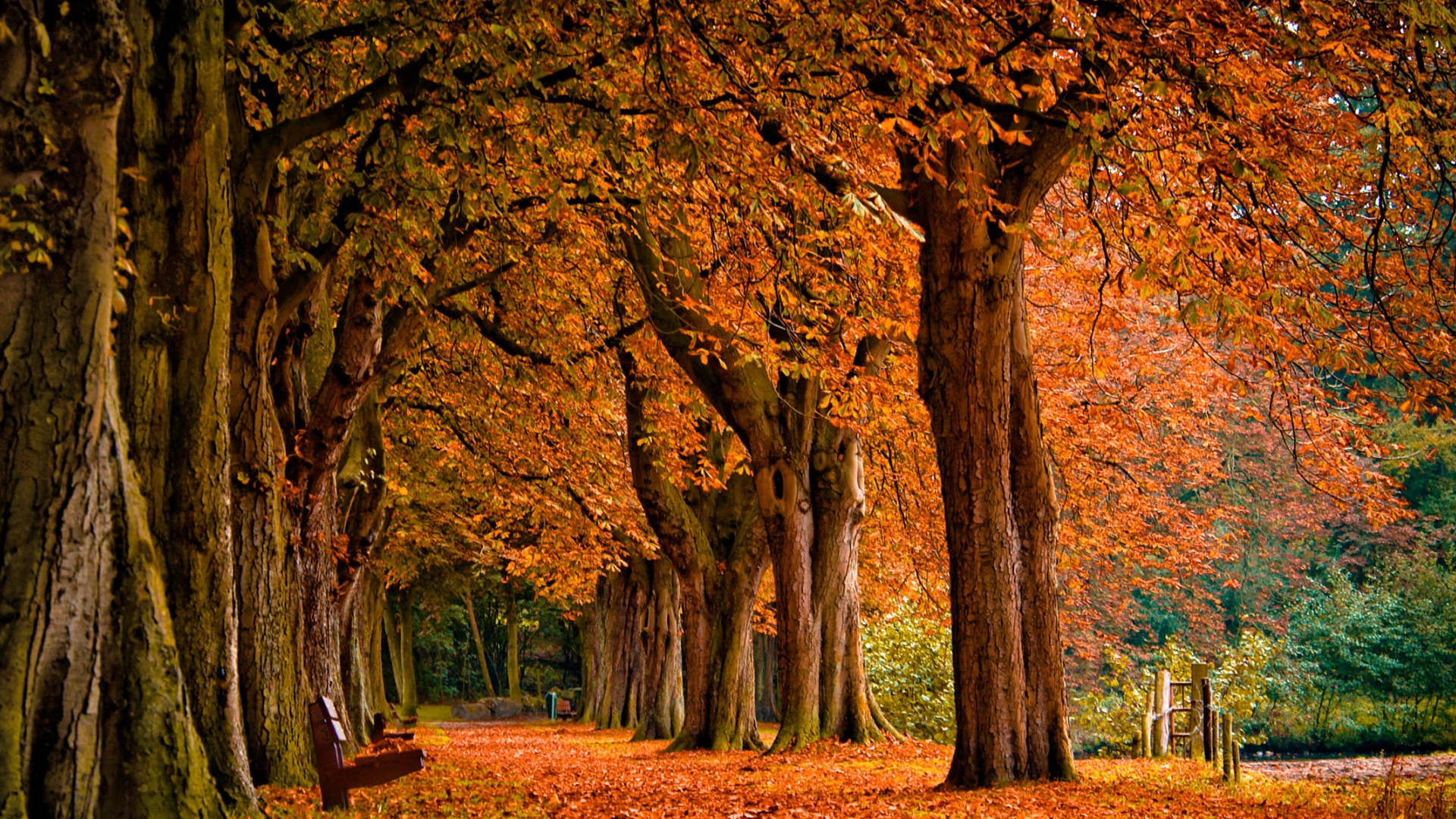 Autumn Wallpapers | Be...