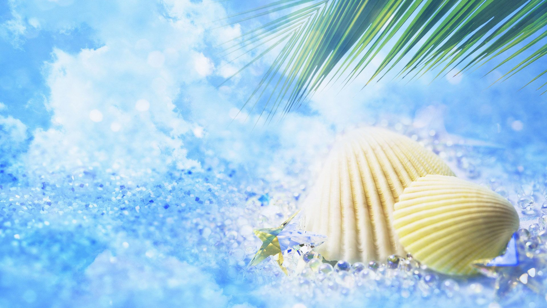 Summer Wallpapers | Best Wallpapers
