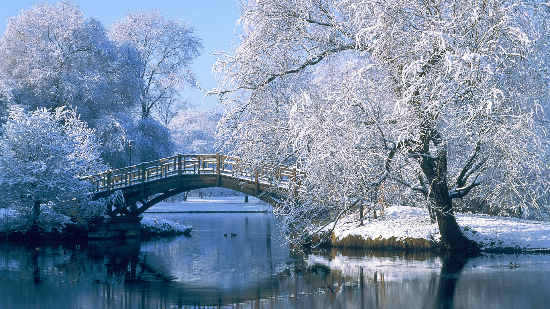 Winter Wallpaper 1920x1080 Winter Wallpapers Best Wallpapers