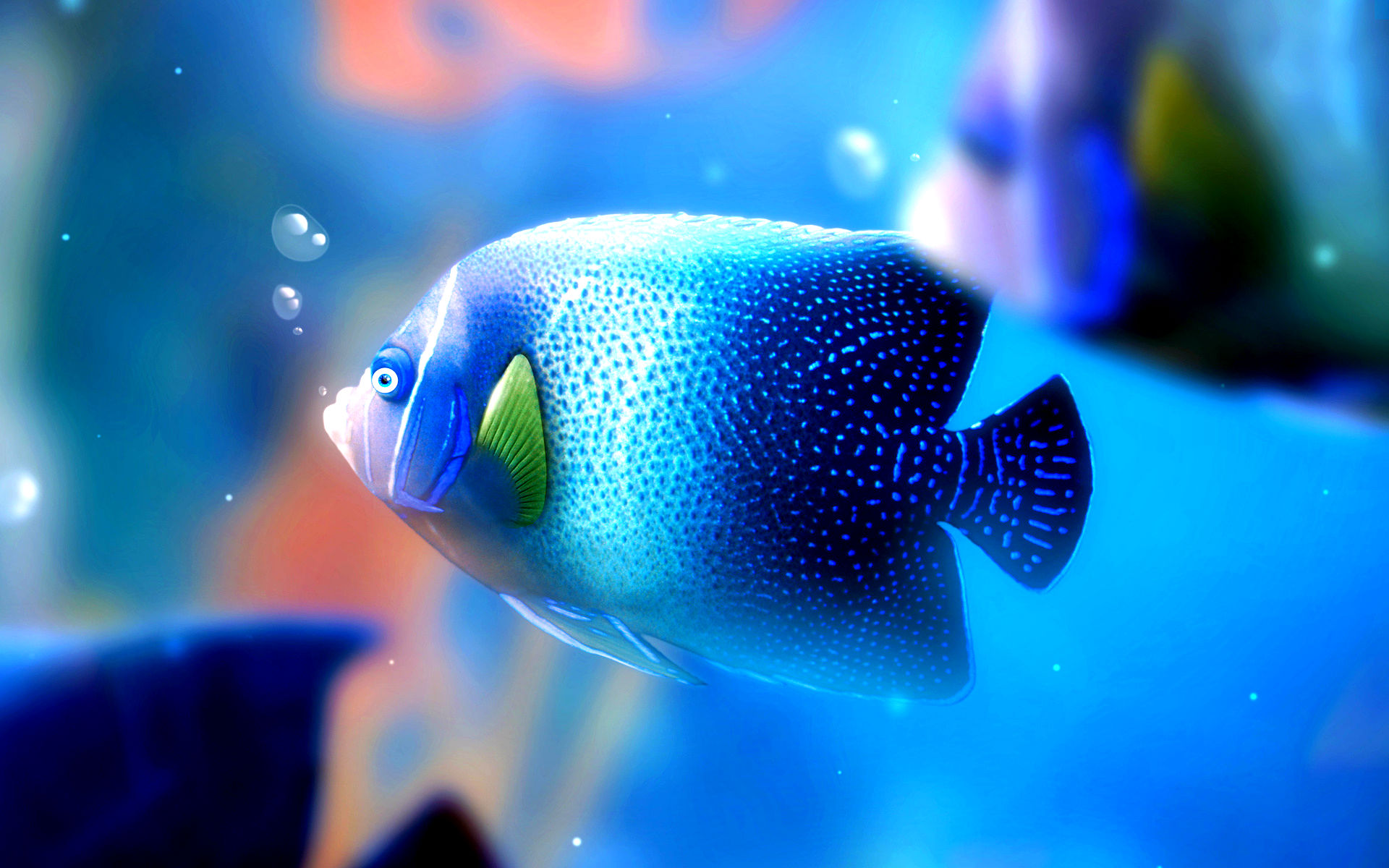 Fish wallpapers best wallpapers for Wallpaper fish in water