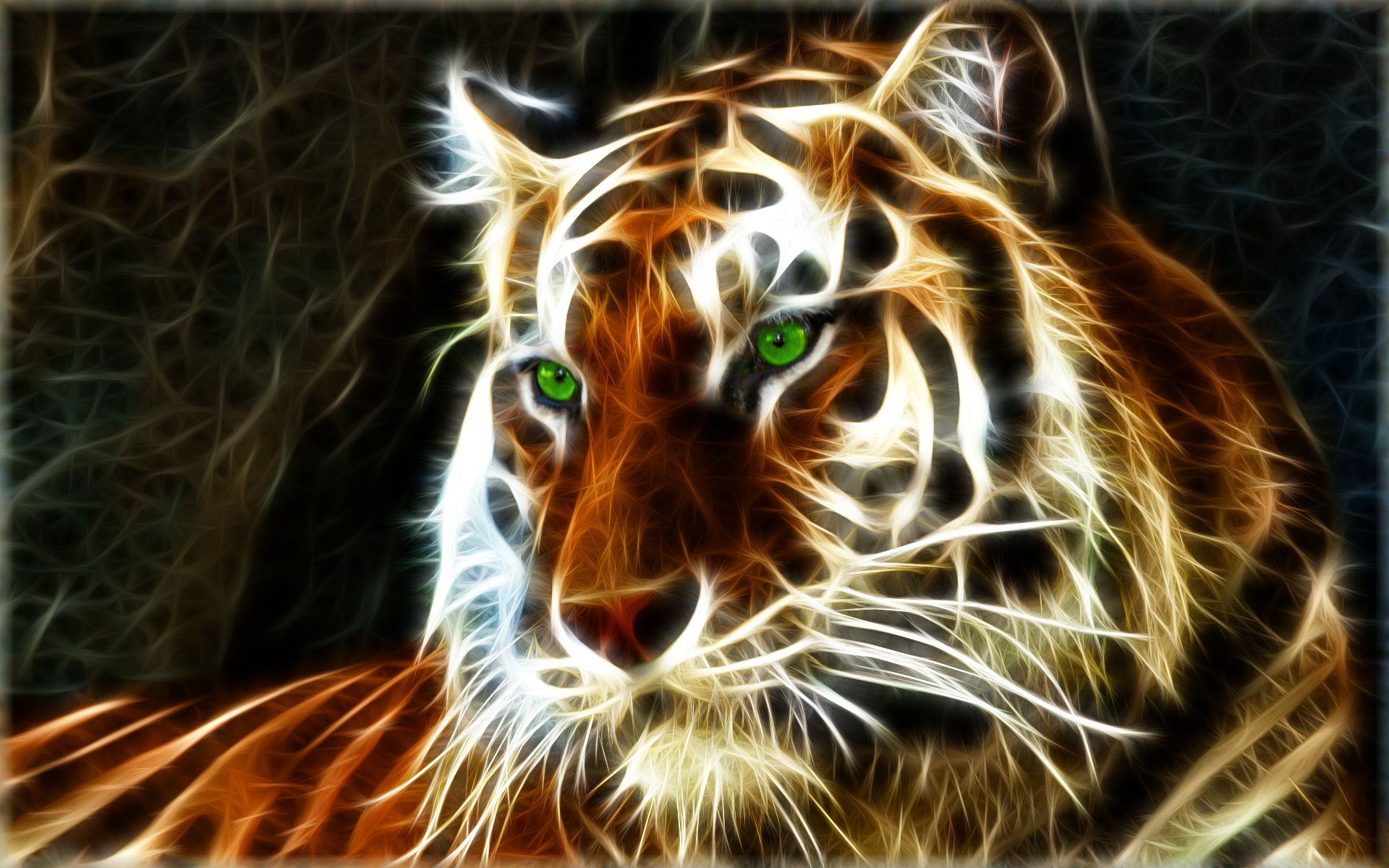 tiger wallpapers | best wallpapers