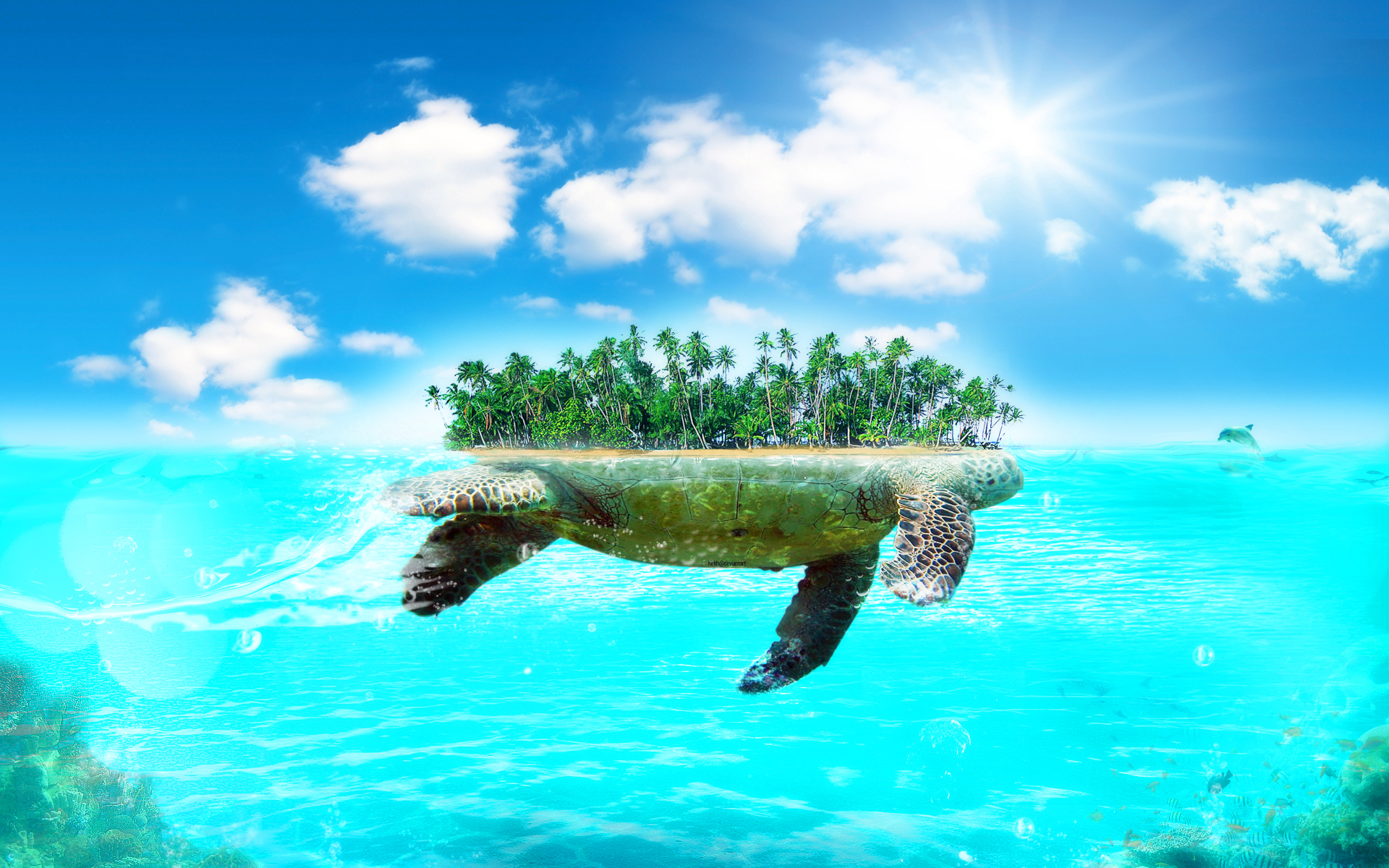 Turtle wallpapers best wallpapers - Large screen wallpapers free ...