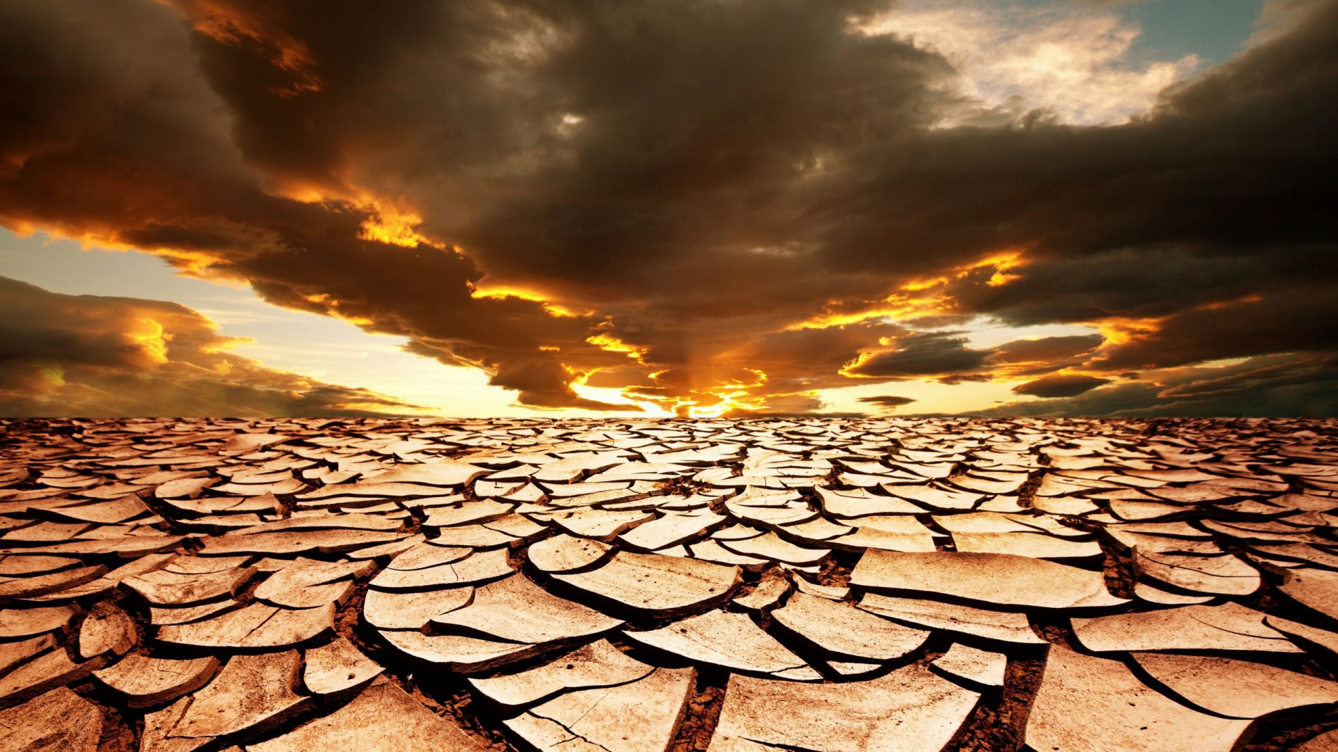 essay on desertifaction Essays, term papers, book reports, research papers on environment free papers and essays on desertification in ghana  we provide free model essays on environment, desertification in ghana reports, and term paper samples related to desertification in ghana .