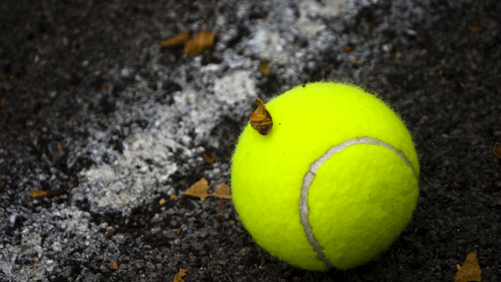 Tennis Wallpapers Best Wallpapers
