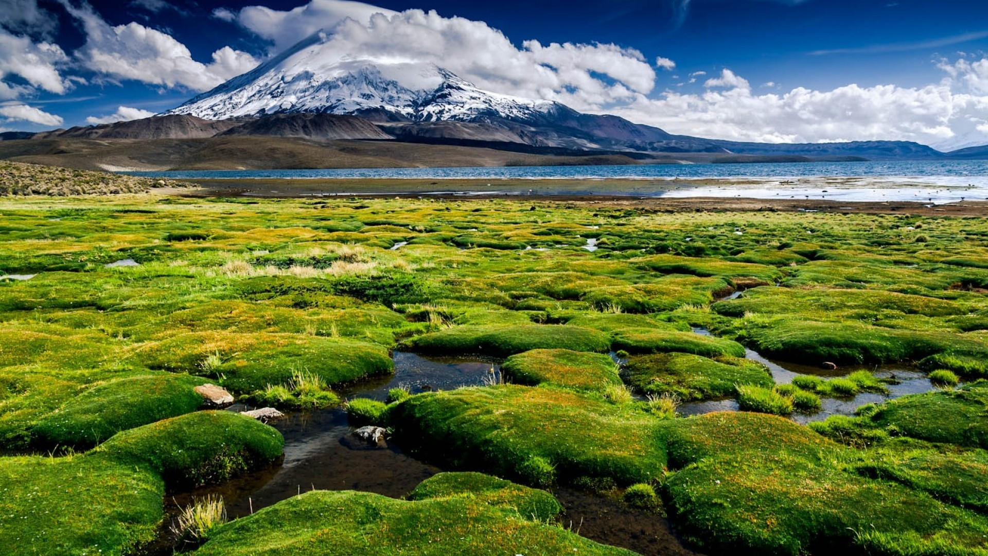 Chile Wallpapers | Best Wallpapers Hd Wallpaper 1920x1080