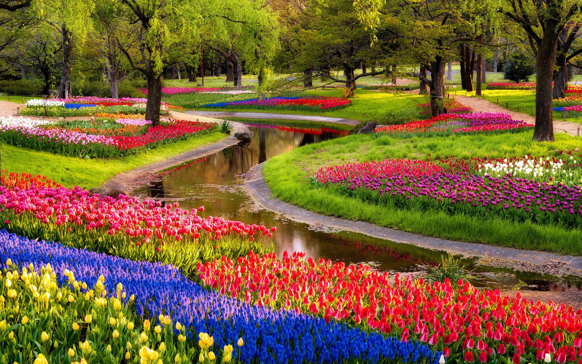 Garden wallpapers best wallpapers for Beautiful flower landscapes