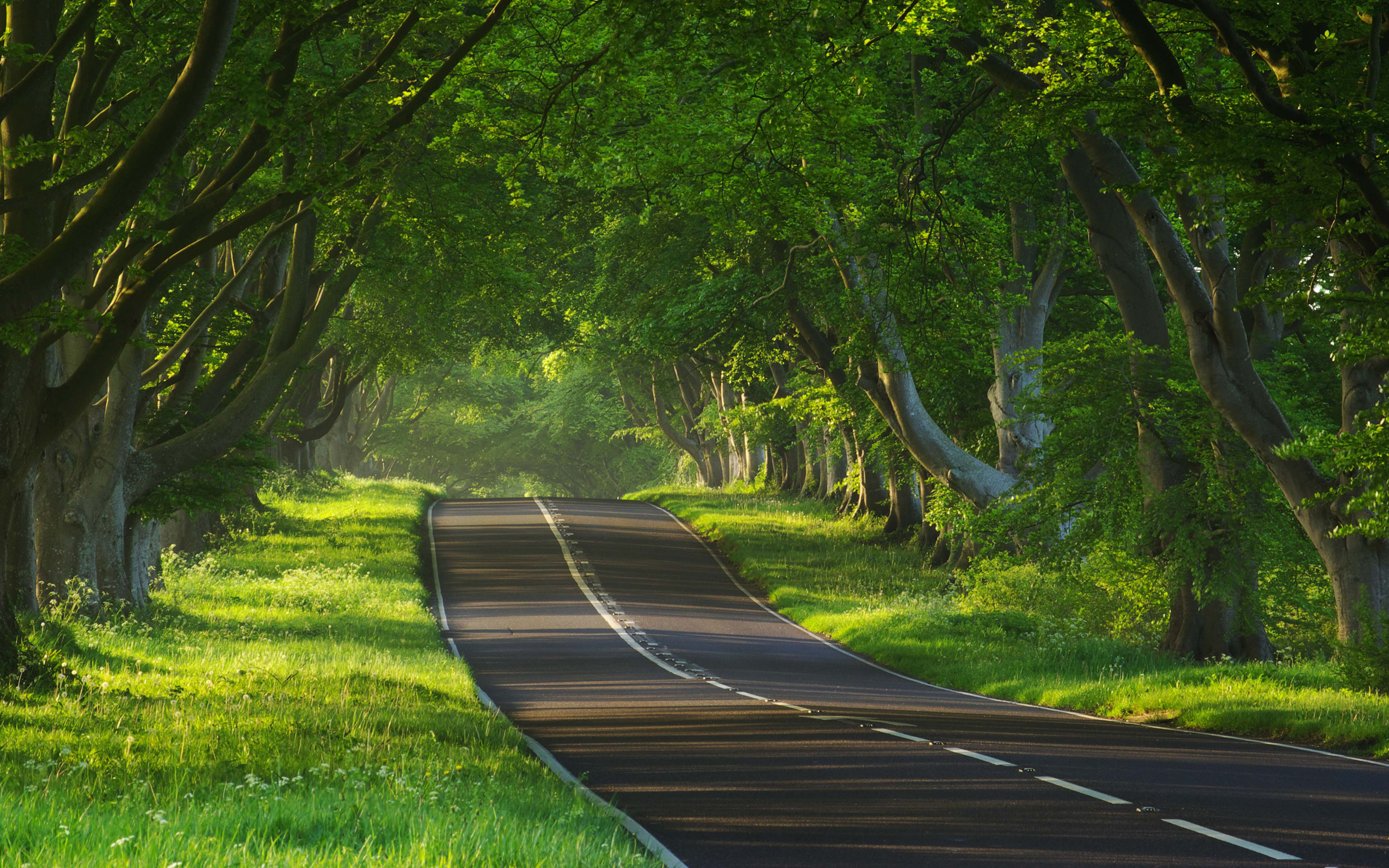 Road wallpapers best wallpapers for Wallpaper for