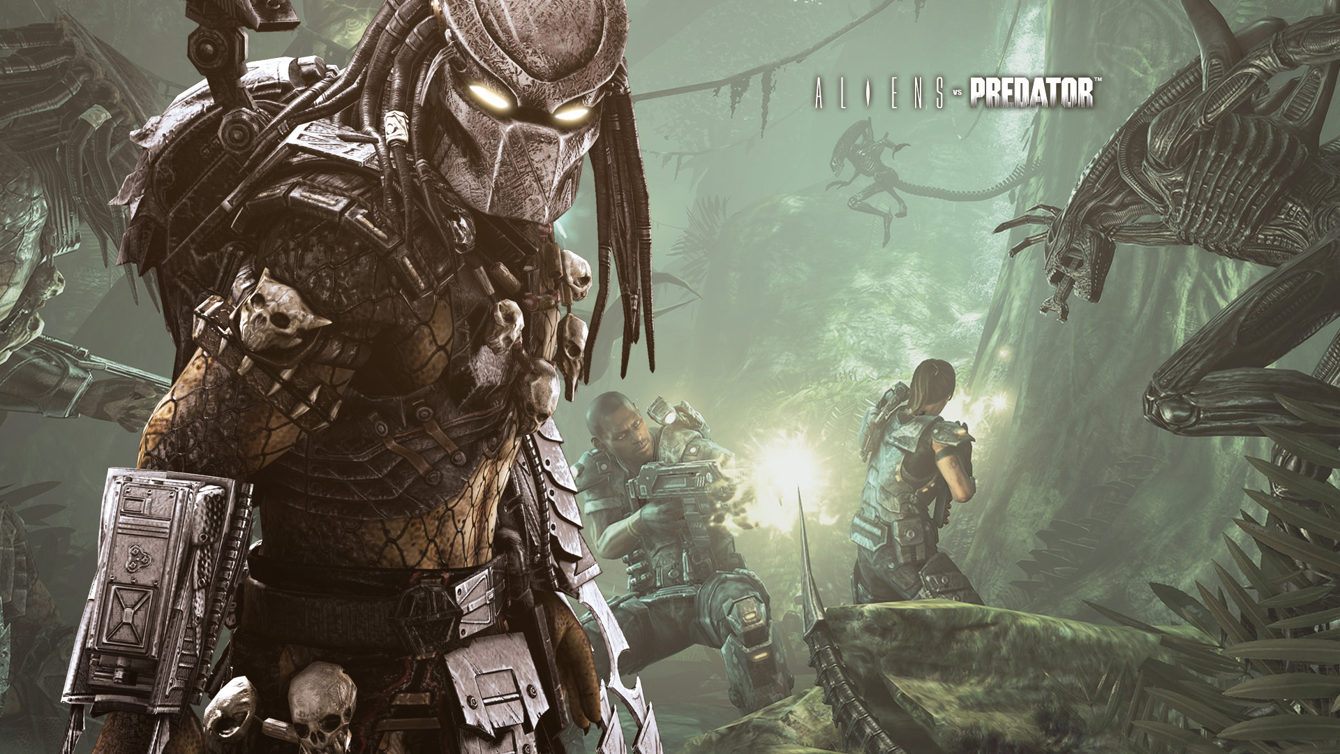 predator - photo #8