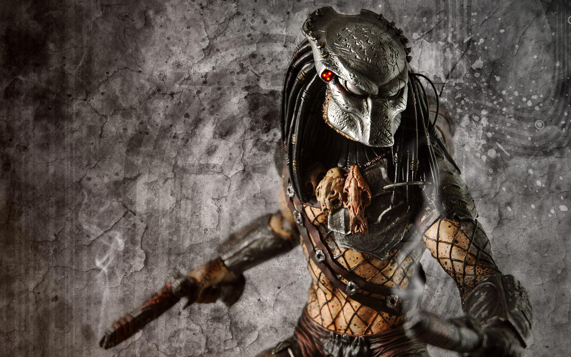 predator - photo #9