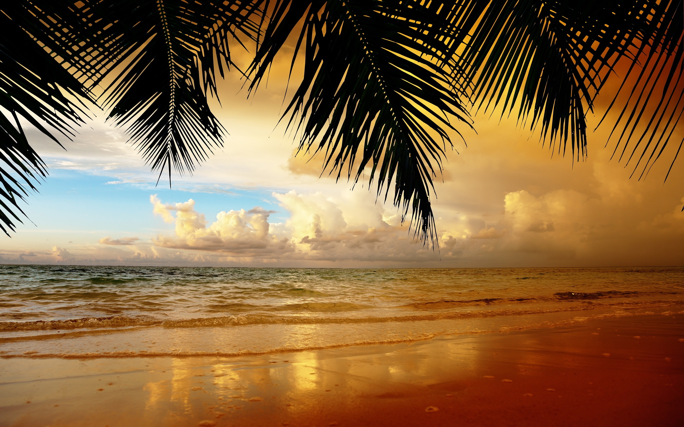 beach wallpapers best wallpapers